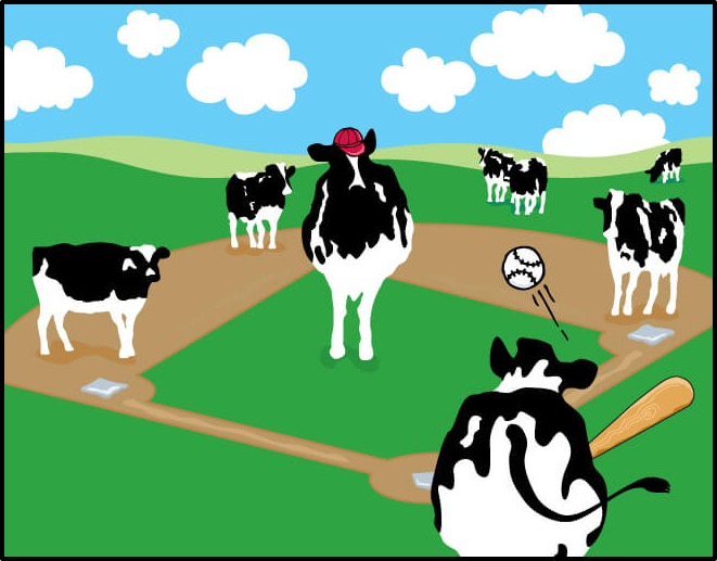 Image result for cow playing baseball